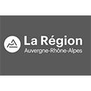 DESS_logo_region